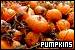 Jack o' Lanters/Pumpkins:
